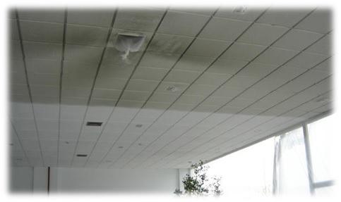 Regeneración de falsos techos porosos