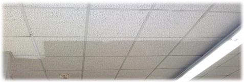 Regeneración de falsos techos - Fibra